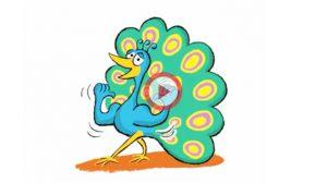 Vidéo expression proud as a peacock